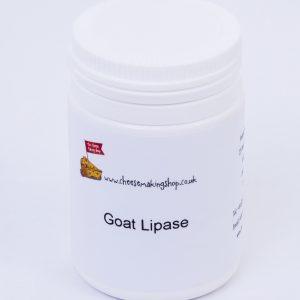 Goat Lipase
