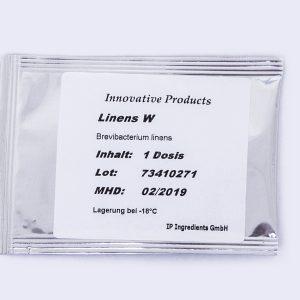 Brevibacterium linens